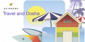 travel and dosha